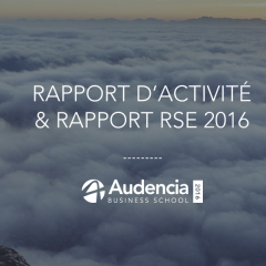 Rapport d'Activité & RSE 2016