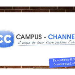 Campus Channel - Exec M.Sc Directeur Commercial & Marketing