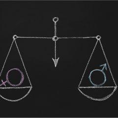 Etude : analyse d'impact d'un plan Egalité Femme-Homme