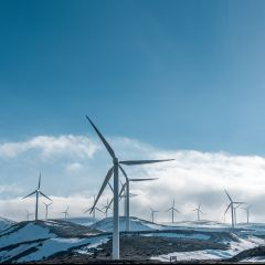 Energy transition, a big challenge for consultants