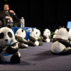 Conférence de sensibilisation à la RSE WWF France