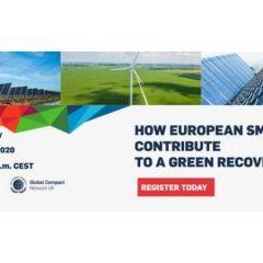 Webinaire du Global Compact sur PME et Relance Verte