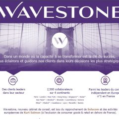 Wavestone  - webinar / live chat