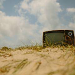 Restez curieux : Le top des chaînes vidéos de l'été