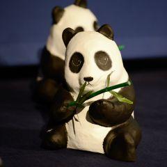 Retour en image sur la Conférence annuelle WWF France